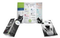 Print-Pethealth-AGM-Brochure